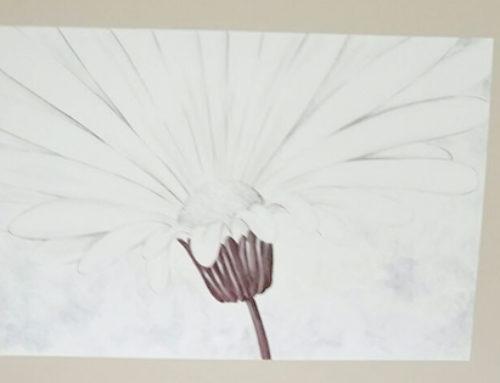 Cómo escoger pintura decorativa para paredes