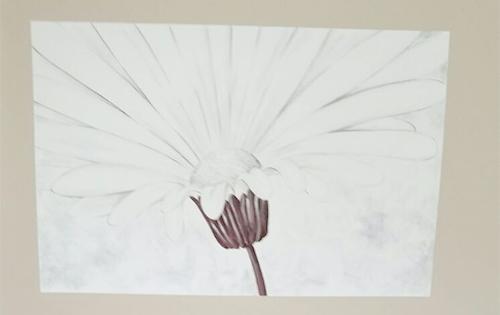 pintura decorativa para paredes